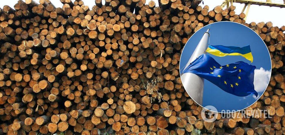 Наламають дров: Кабмін вирішив обвести українців навколо пальця і продати ліс у ЄС